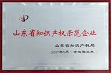 山东省常识产权示范企业
