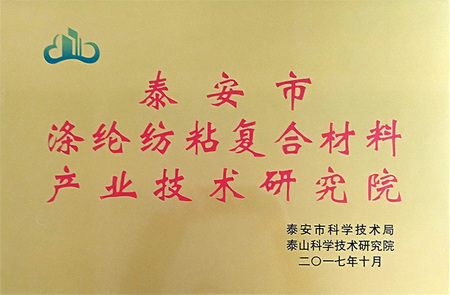 泰安市涤纶纺粘复合材料产业技术研究院